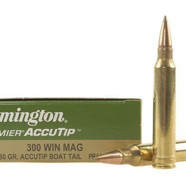 REMINGTON ACCUTIP .300WM